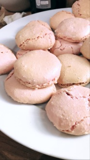 rose macarons shells